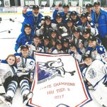 Dominant Livonia Knights win Tier 2 title