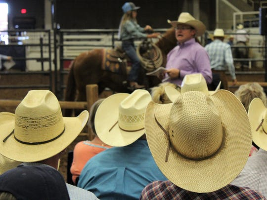 Two things showed up for Saturday's ranch horse sale - bidders in cowboy hats and money in their checking account. Horses fetched a good price at the sale. Each horse was shown attendees.