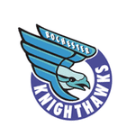 Rochester Knighthawks top Calgary 9-8 in OT