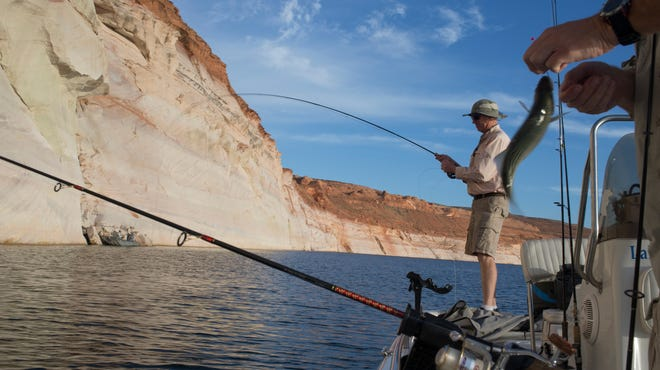 Lake Powell's former water levels can be seen beyond two fishermen.    mark and that distance can be seen by the white chalk mark on the canyon wall.   Mark Henle/The Arizona Republic