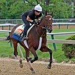 Preakness Stakes entrant and Illinois Derby winner Departing gallops the track at Pimlico Race Course in Baltimore, Thursday, May 16, 2013, with exercise rider Trina Pasckvale in the saddle. (AP Photo/Garry Jones)