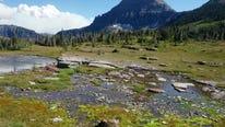 Photo contest winners capture Montana's beauty