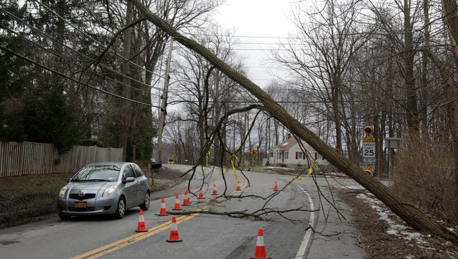A downed tree covers Old Yorktown Road in Yorktown, one of the heaviest hit areas from the storm on March 5, 2018.