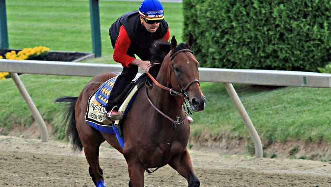 Exercise rider Jorge Alvarez gallops Preakness Stakes entrant American Pharoah at Pimlico Race Course in Baltimore on Friday.