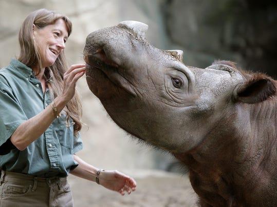 -Rhino 2.jpg_20090929.jpg