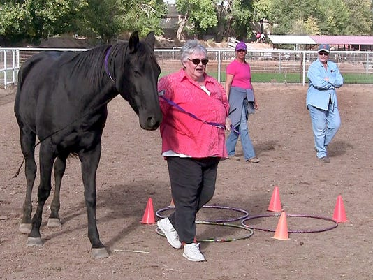 NMSU equine therapy