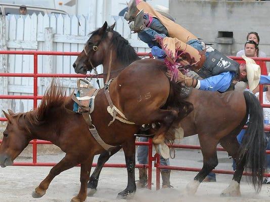 MNJ 0715 Crawford County Fair.jpg