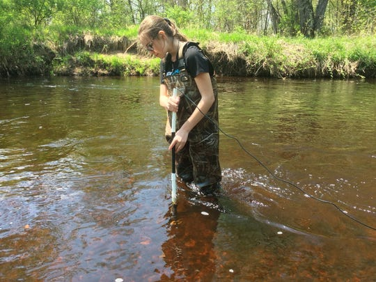 Students worked on the biotic indexing of aquatic insects in the Eau Claire River.