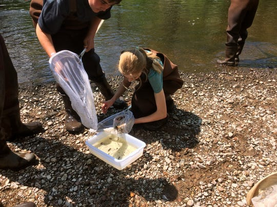 Students examined aquatic insects and studied the structure and flow of the Eau Claire River.