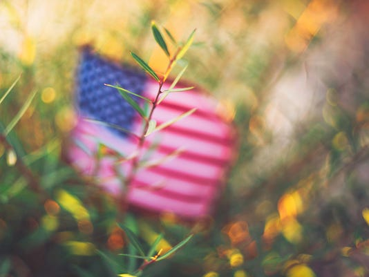 Autumn background with American flag in sunlight