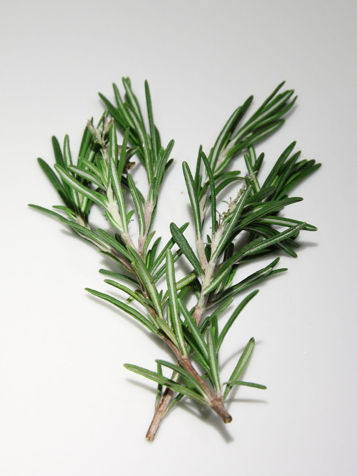 Jenny recommends using rosemary for aromatherapy.