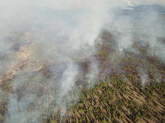 Aerial image of the Maple Fire.
