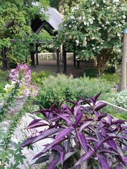 The back garden at the Delaware Center for Horticulture.