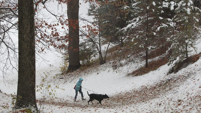 Stephanie Yee, Rochester, enjoys the first snowfall of the season as she walks her dog Onyx, a French Shepard, around Highland Park in Rochester Monday, Nov. 17, 2014.