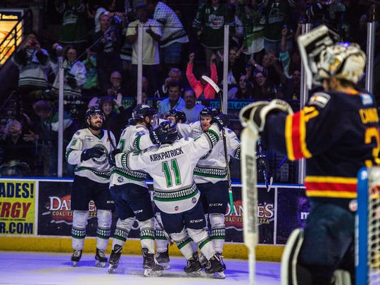 The everblades celebrate after scoring a goal during