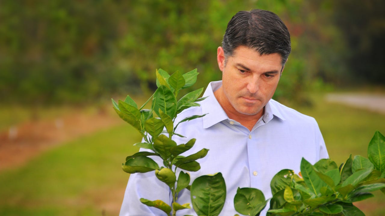 Steve Crisafulli talks about the future of citrus