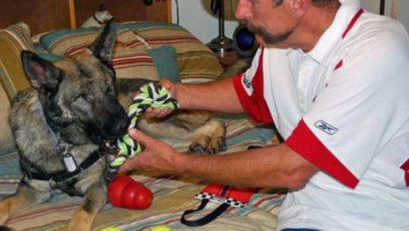 Ross Laflin prepares for a little tug of war with Asur, a blind German shepherd who served with the U.S. Marines as a bomb detector. The Laflin family in Spanish Springs adopted Asur, who lost his sight due to acute glaucoma.