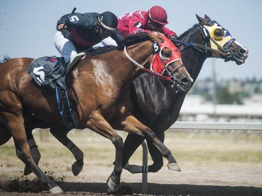 Sunday Horse Races