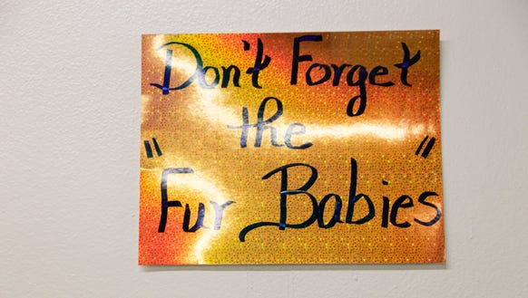 'Don't Forget the Fur Babies,' sign at the Acadian