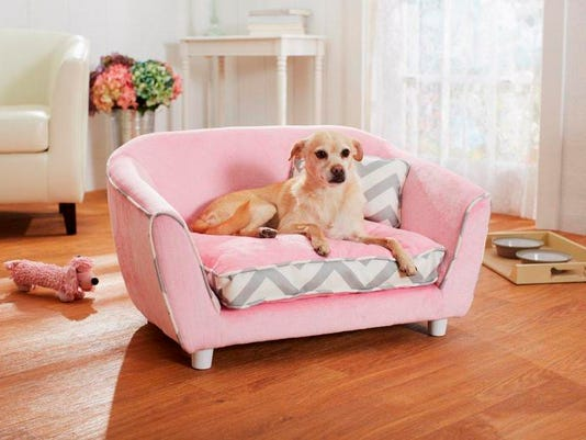 Pets-New Furniture_Schu (1).jpg