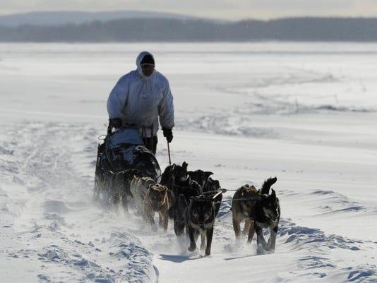 -BREBrd_03-11-2013_Daily_1_C002~~2013~03~10~IMG_Iditarod_Sled_Dog_Ra_3_1_II3.jpg