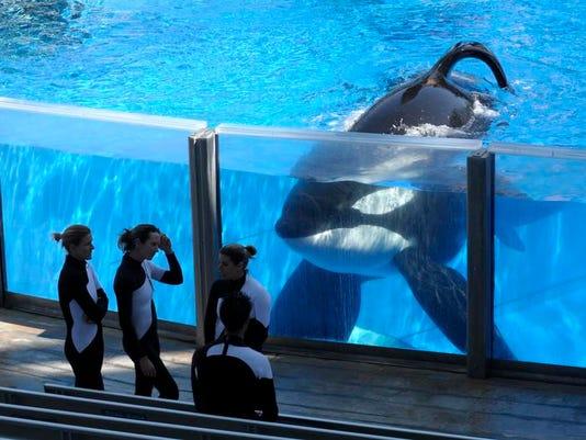 SeaWorld-Entertainers.jpg