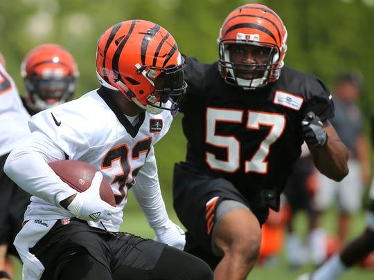 Cincinnati Bengals running back Jeremy Hill (32) looks