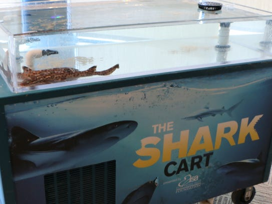 The Shark Cart has made visits to several Ohio school