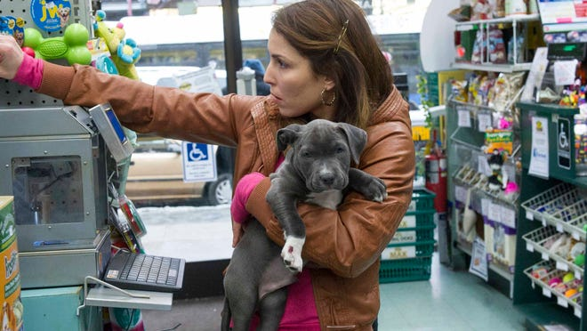 """This undated photo provided by Twentieth Century Fox, shows actress Noomi Rapace as """"Nadia"""" holding Rocco, a puppy Pit Bull in the film """"The Drop"""" staring the late James Gandolfini. Rocco is one of three puppies used to portray a dog found by the leading actor was awarded an American Humane Association Pawscar award. Like the Oscars, the Pawscars are the pinnacle of awards season. Pets have already been center stage at the World Dog Awards, the first ever primetime adoption telethon, Super Bowl alternatives the Puppy Bowl and Kitten Bowl, and the Westminster dog show. (AP Photo/Twentieth Century Fox, Barry Wetcher)"""