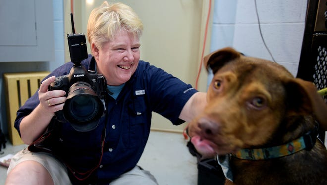 Penny Adams gives Tonka, a shelter dog, peanut butter while taking his picture in a closet turned photo studio at the Williamson County Animal Center on Sept. 30, 2016. Adams volunteers taking portraits of shelter animals at Williamson County Animal Center in hopes that the portrait will encourage an adoption at a loving home.