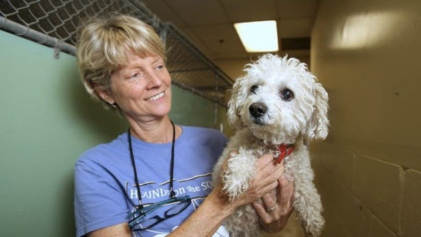 Shelter Manager Dana Rocco holds a bijon up for adoption at the New Rochelle Humane Society Sept. 27, 2014.