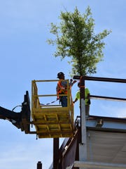 "A ""tree topping"" ceremony Tuesday took place at Danfoss"