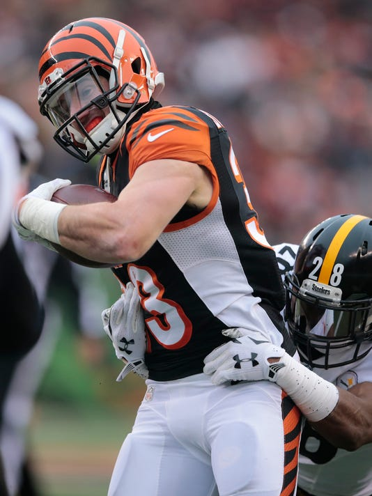 what will happen with rex burkhead