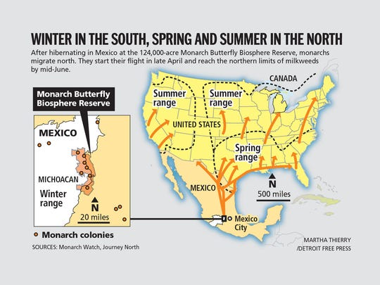 Winter in the south, spring and summer in the north