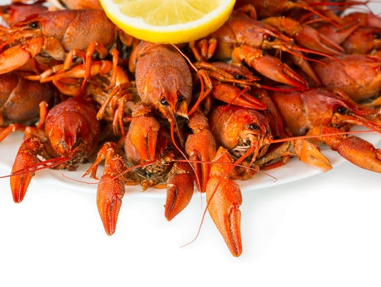 Boiled crayfish on a white background