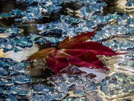 Icy-Art-1---Fuhrman.jpg