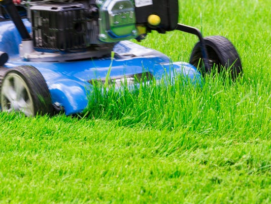 Moving Blue Lawnmover Cutting Green Grass