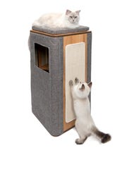Cats can live in style with the  Catit's Vesper Cubo.