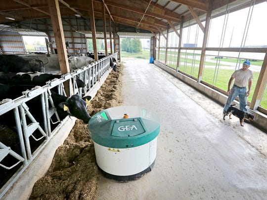 A robotic feeder made by GEA Farm Technologies makes