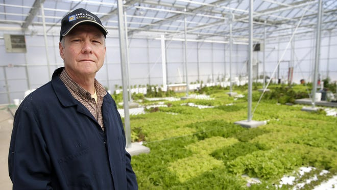 Gil Shaw, manager of the hydroponic greenhouse and orchard at Riverview Gardens, stands in the new hydroponic deep water culture greenhouse in Appleton.