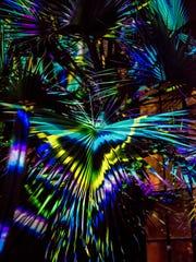 167012_Nightscapes_Davis_Harold_Hank_Longwood_Volunteer_Photographer_.jpg