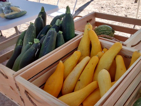 Locally grown squash was among the produce sold at