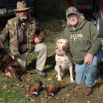 Engberg: Pheasant season closing in