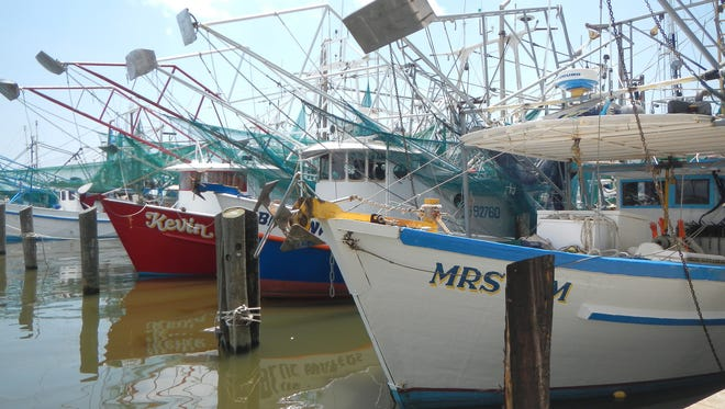 Small sizes have closed areas in Mississippi and Louisiana waters for shrimp fishermen.
