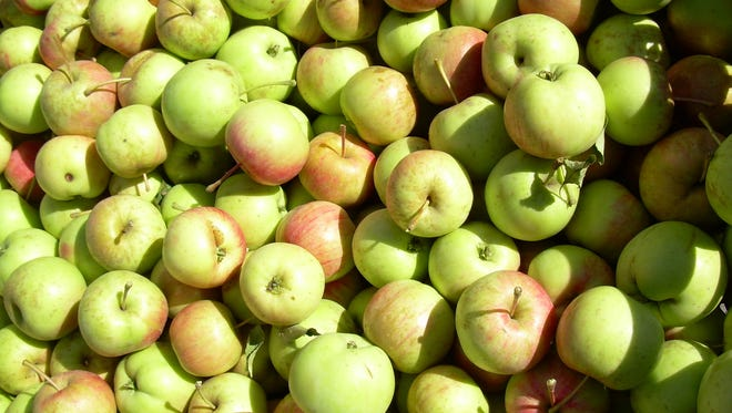 IT's time for fresh apples from the high desert.