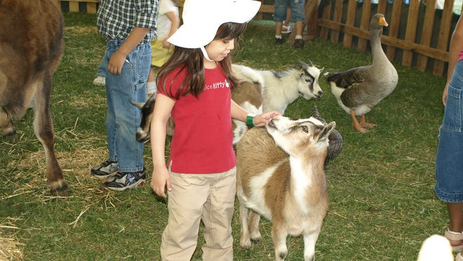 Harvest Fest at Enchanted Island petting zoo.