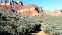 Unlike the Grand Canyon's corridor trails, the Tonto receives very little foot traffic.