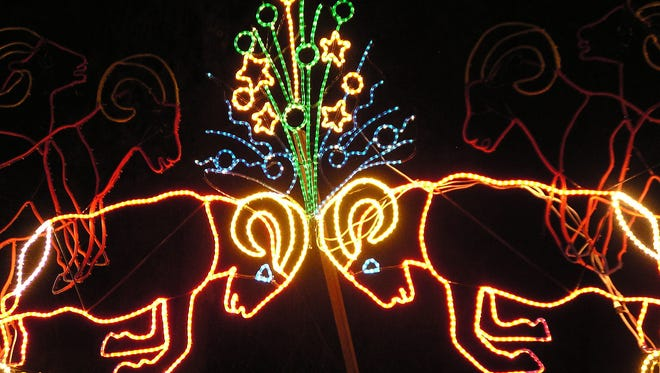 Two bighorn sheep rams heads with lights signyfying the impact as part of the Zoo LIghts display at the Denver Zoo.