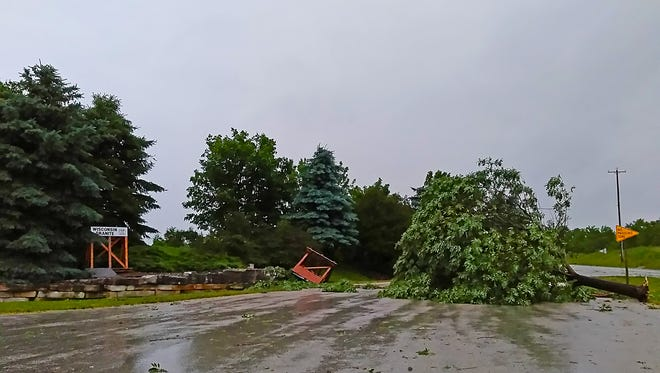 A tree is seen laying in the parking lot of Michael's Stone on Highway 175 just south of Hamilton Road after high winds from a storm raked across Fond du Lac County Monday afternoon. Trees and wires were reported down throughout Fond du Lac County.