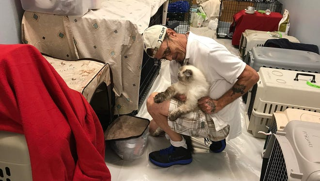 James Blanchard, of Wabasso, looks after his fianee's cat, Bejue, on Sept. 9, 2017, at the Liberty Magnet School pet shelter in Sebastian.